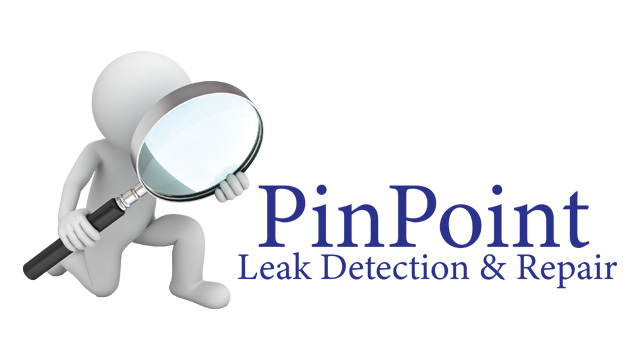 Home Pros - Pinpoint Leak Detection.png